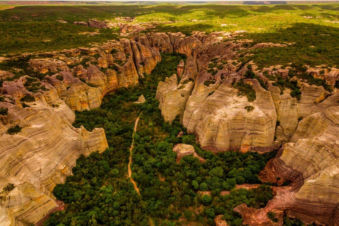 Galeria: No dia da Caatinga, fotógrafos mostram a beleza do sertão