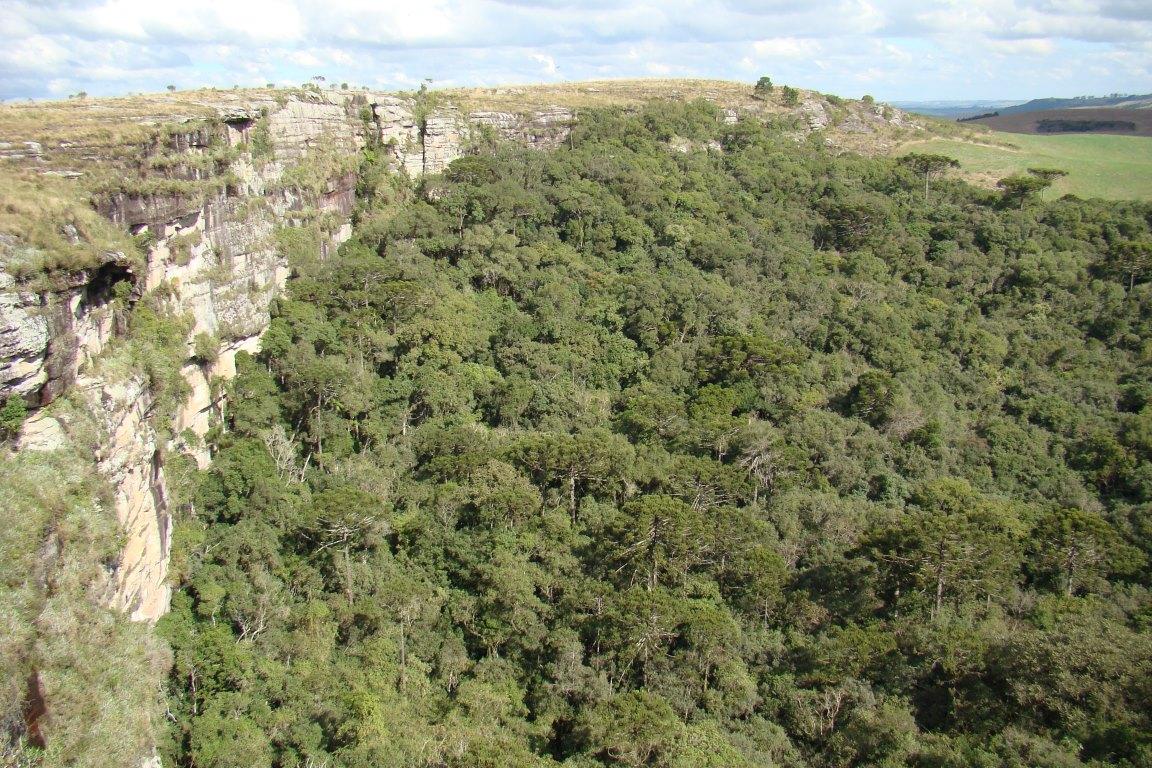 Deputada pede extinção do Parque Nacional dos Campos Gerais; ministro visitará região