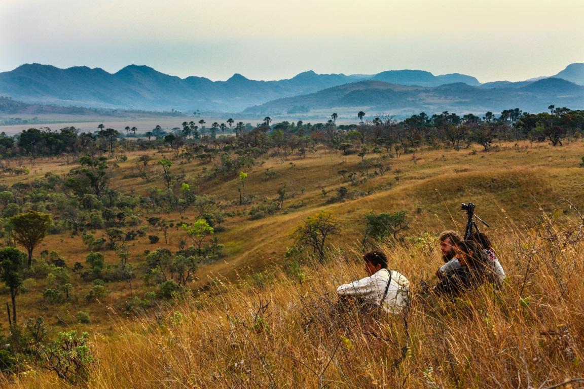 Documentário expõe a devastação do Cerrado