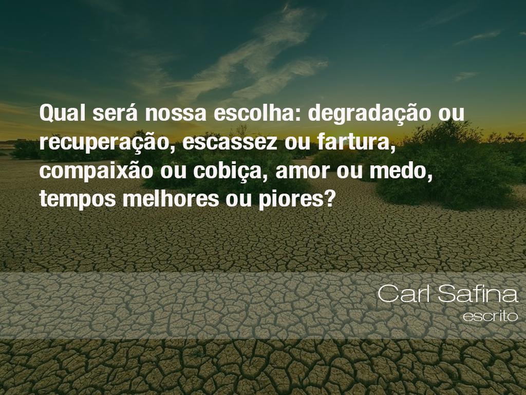 Frases Do Meio Ambiente O Eco