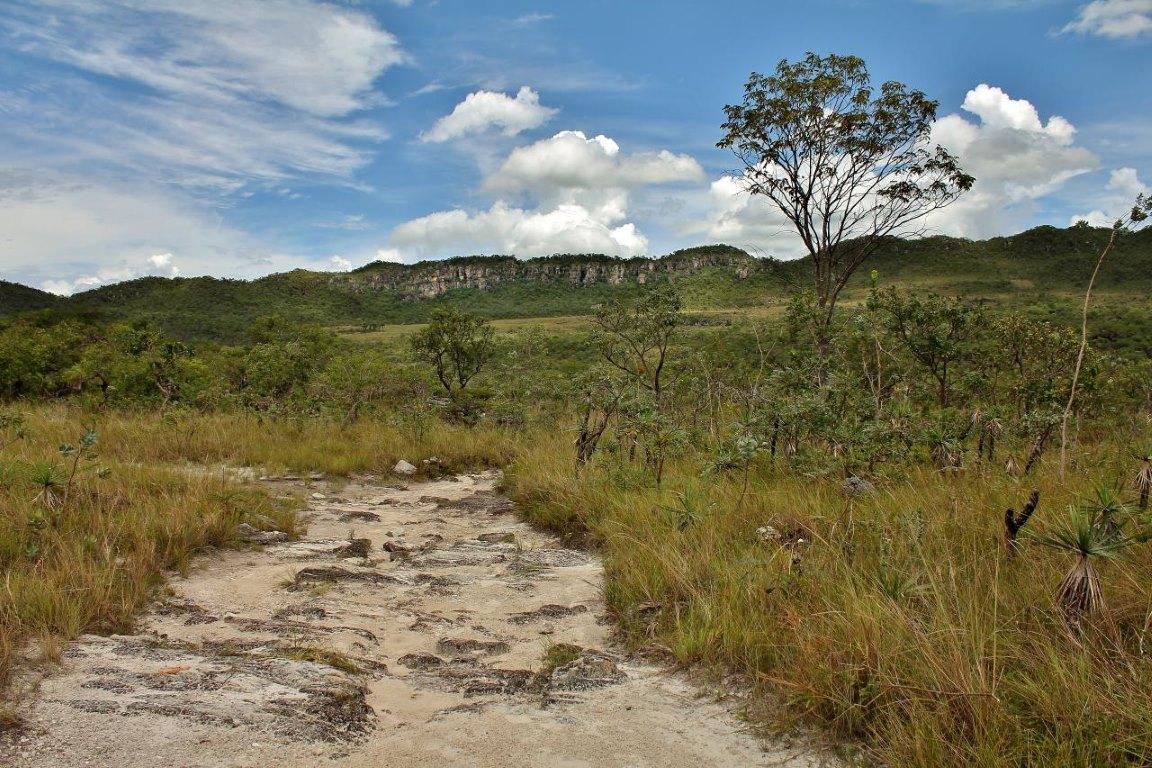 Governo institui grupo para coordenar concessão de visitação em parques