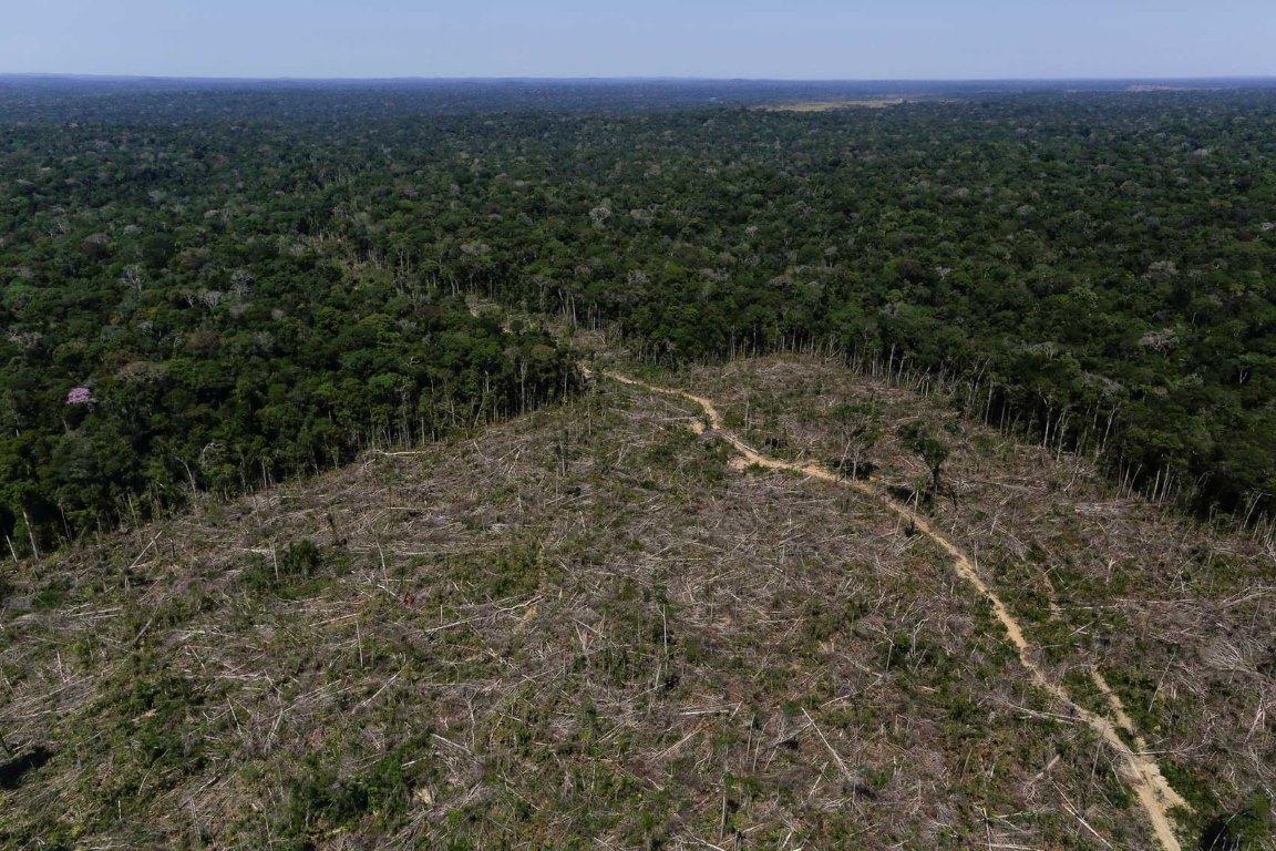 A insustentável agenda ambiental do presidente