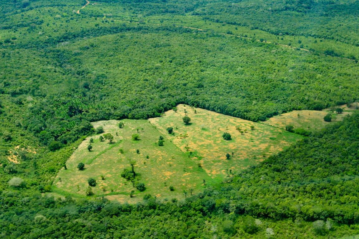 Noruega suspende R$ 130 milhões para o Fundo Amazônia