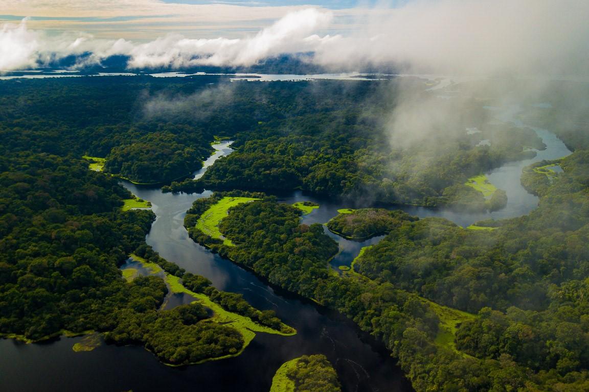 Poderá a Amazônia nos salvar?