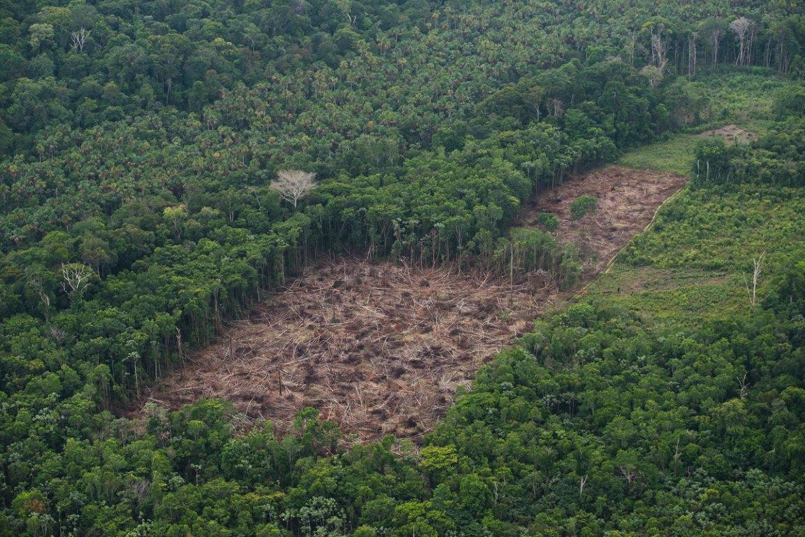 Diretor do INPE é exonerado após Bolsonaro criticar dados do desmatamento