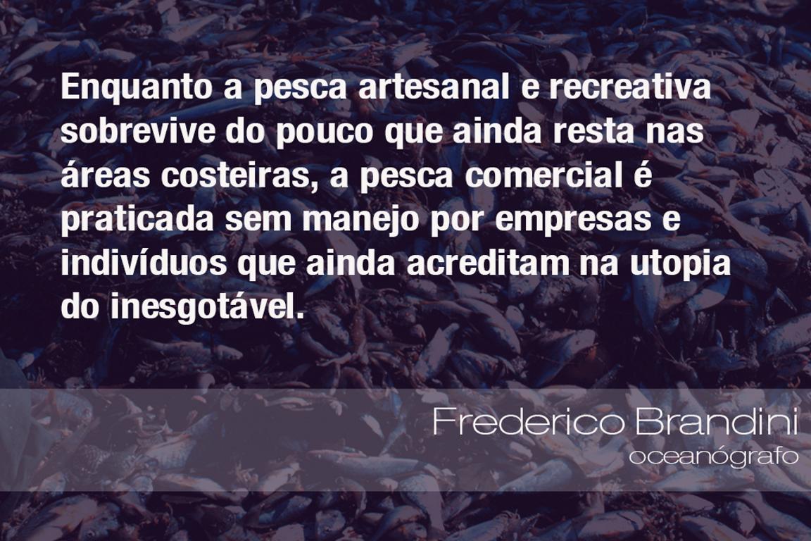 Frases do Meio Ambiente – Frederico Brandini, oceanógrafo (08/08/2019)