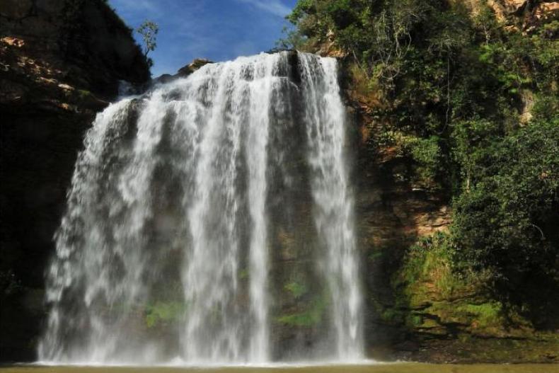 Com ajuda de produtores, programa promove restauração de bacia hidrográfica em Minas