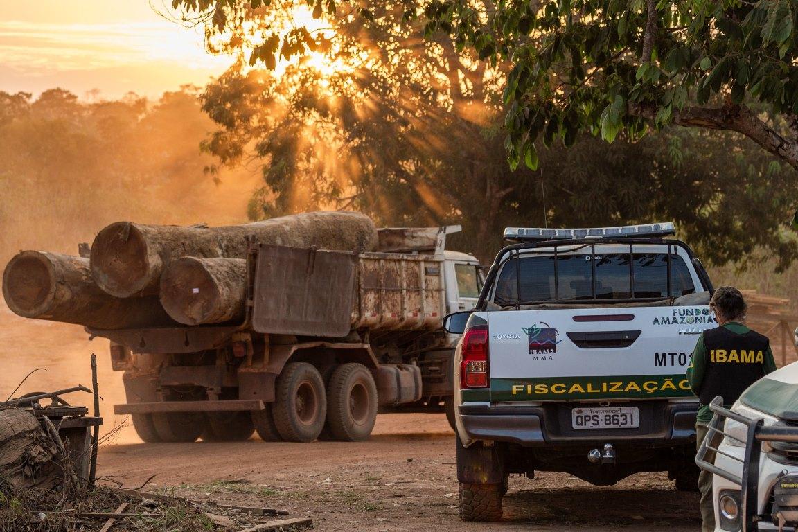 Por que, afinal, Noruega e Alemanha doam recursos para o Brasil? O Fundo Amazônia em 10 perguntas e respostas