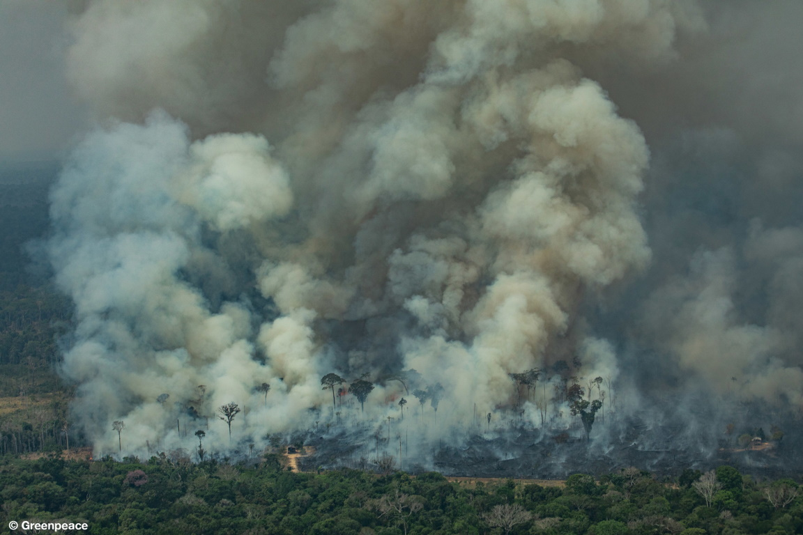 Uma Amazônia saudável e produtiva é a base da soberania do Brasil