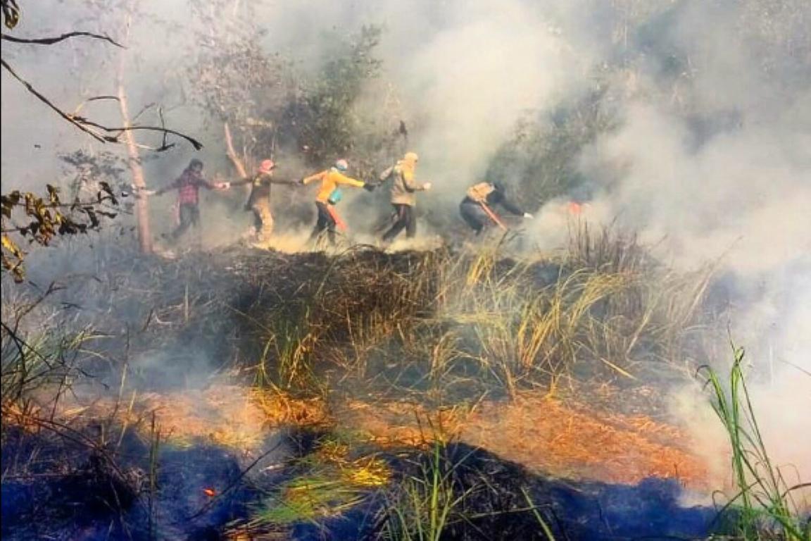 Pará: Incêndio em Alter do Chão foi parcialmente controlado