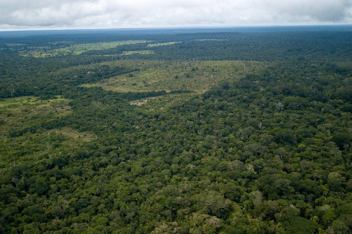 Amazônia, uma questão crônica de princípios constitucionais não respeitados