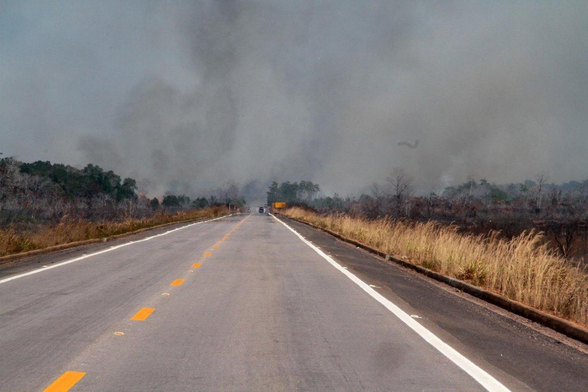 Vídeo: Qual a relação entre fogo e desmatamento?