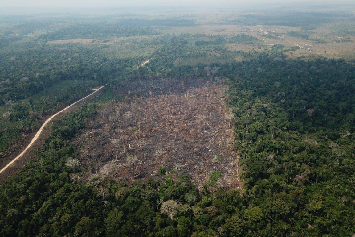 Fake Sciences e manipulação tentam encobrir as queimadas na Amazônia