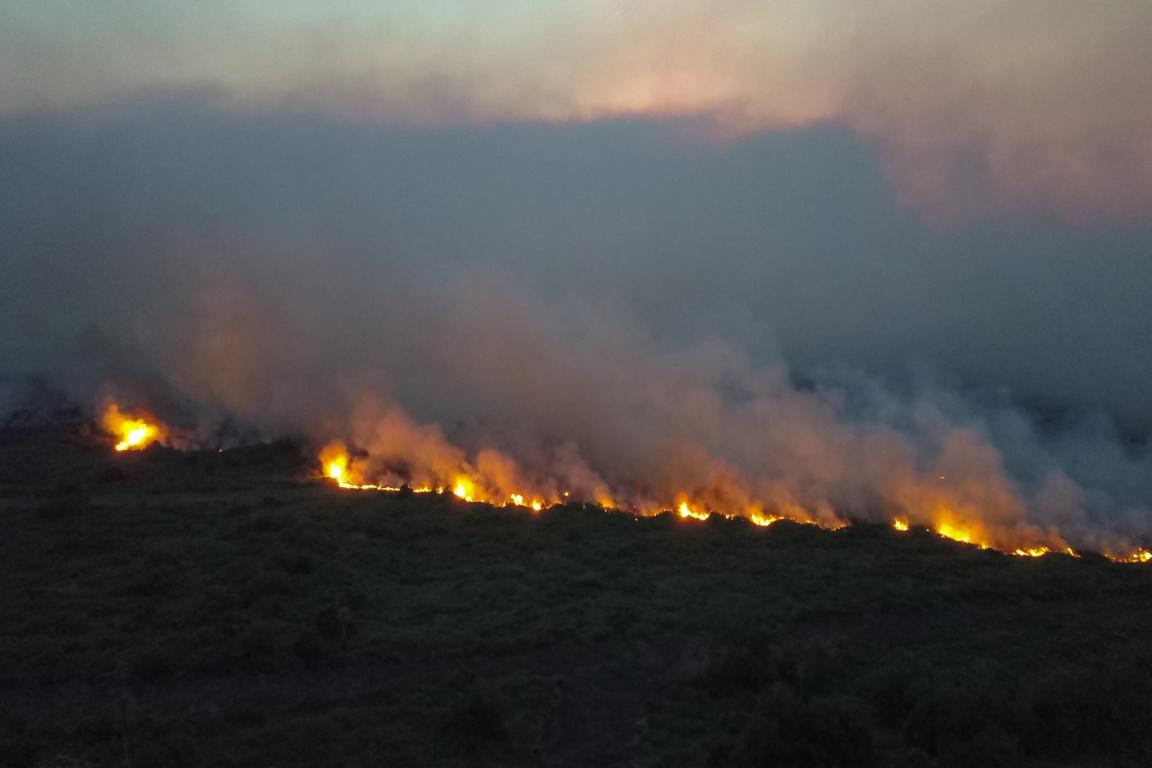 Incêndio no Pantanal atinge 2.430 focos em outubro, pior mês desde 2002