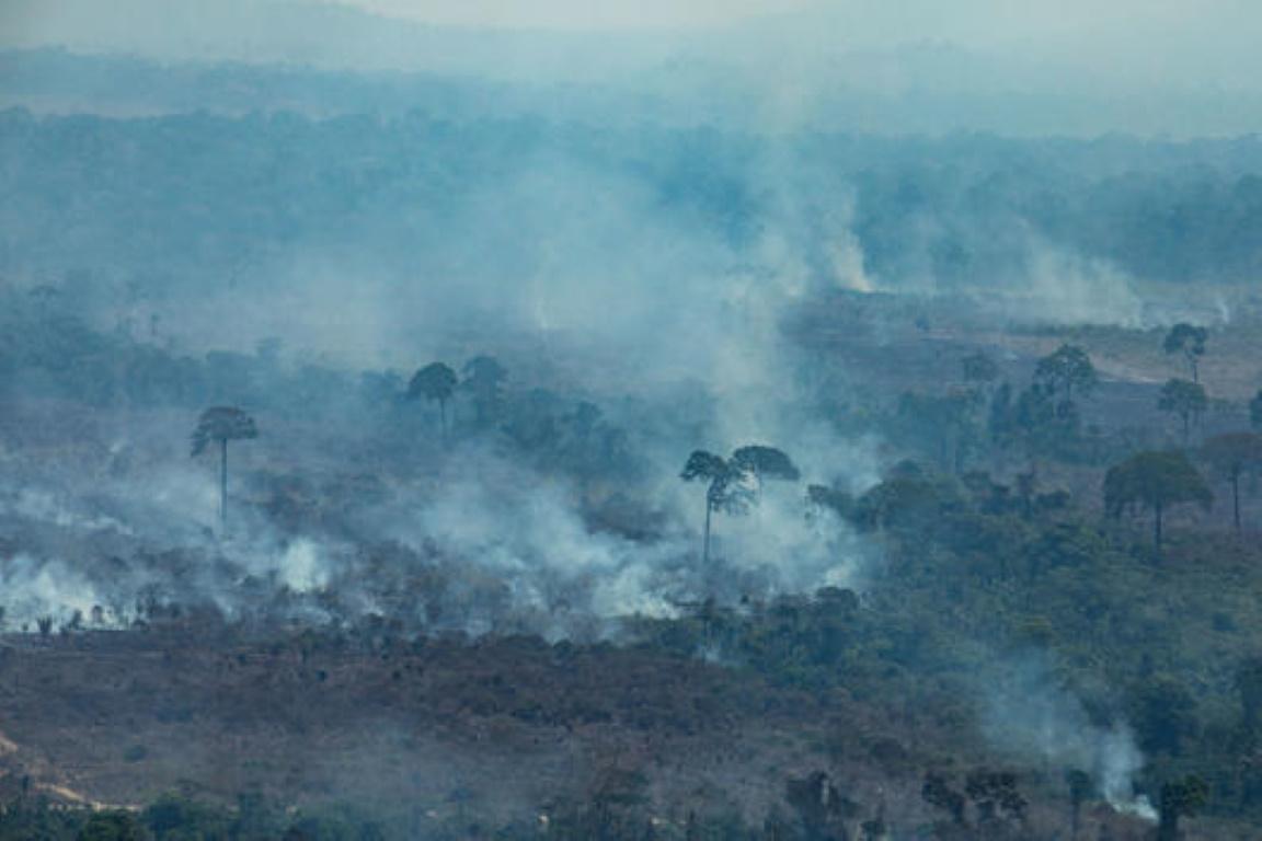 Queimadas na Amazônia sofreram aumento de 30% em 2019, afirma INPE