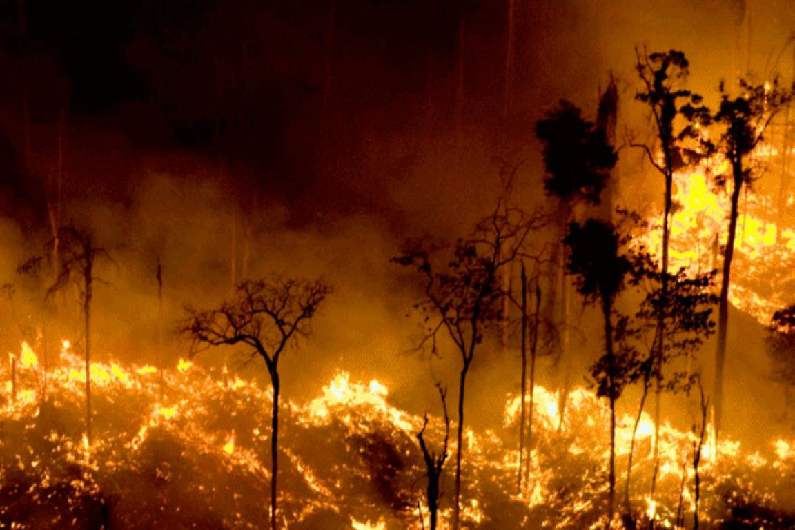 Clima tornará Amazônia duas vezes mais inflamável neste século