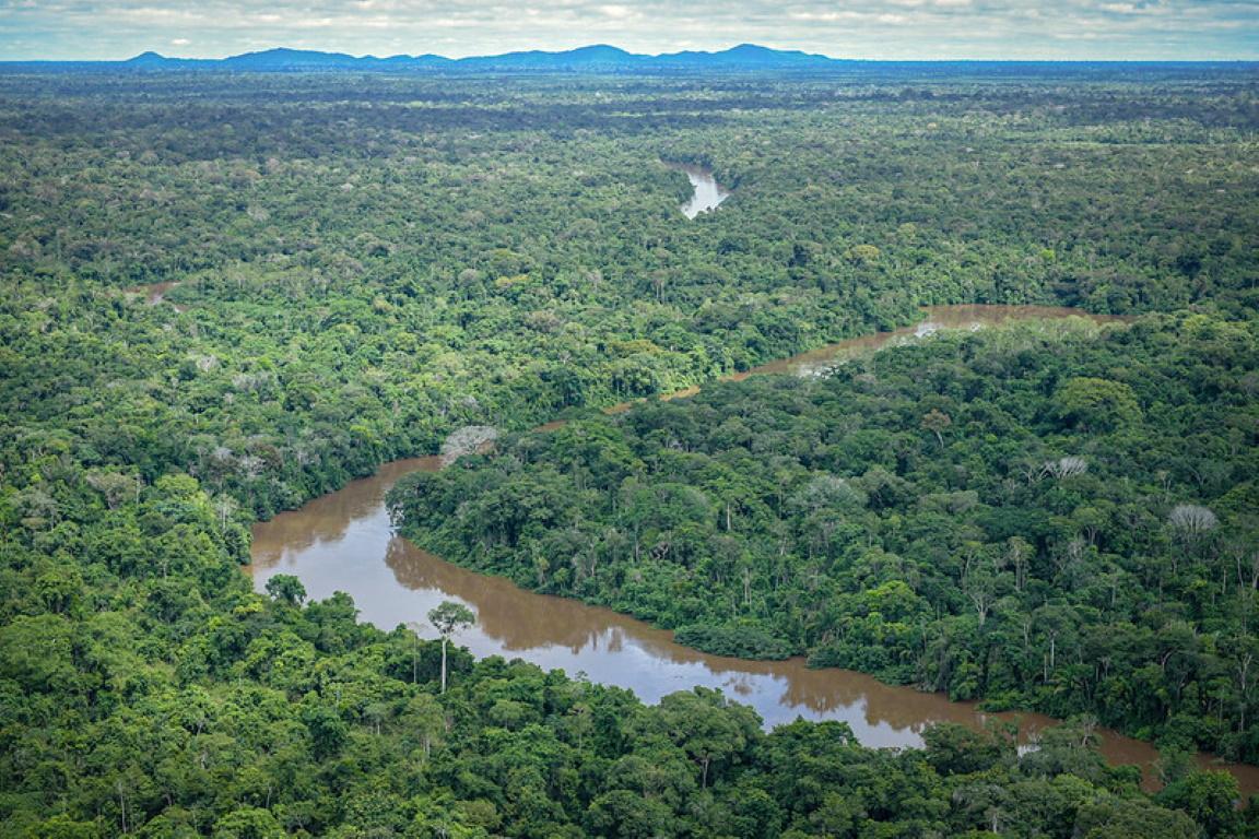 Um futuro para os indígenas amazônicos