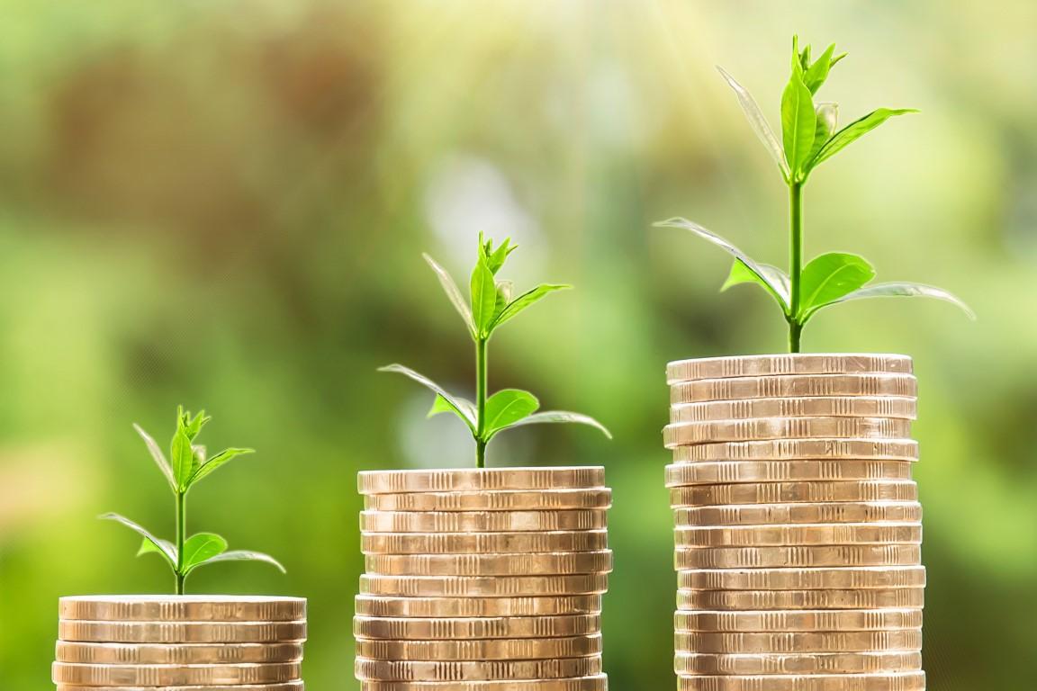 Proposições de economia verde para sair da crise - ((o))eco