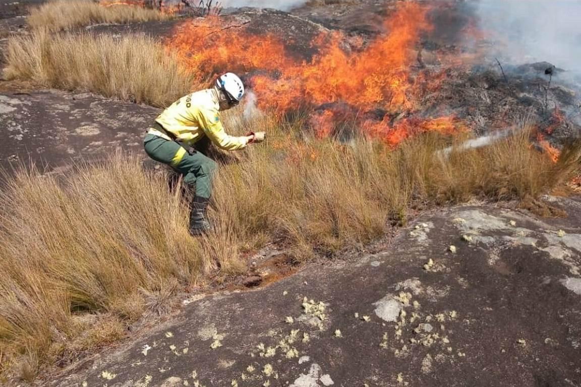 O valor que o fogo queima: PARNASO em chamas - ((o))eco