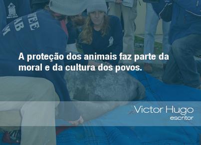 Frases do Meio Ambiente – Victor Hugo, escritor (26/08/13)