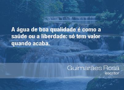 Frases Do Meio Ambiente Guimarães Rosa Escritor 12082013