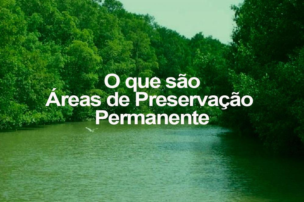 O que é uma Área de Preservação Permanente