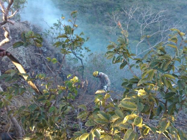 Termina incêndio no Parque Ecológico de Serra de Jaraguá