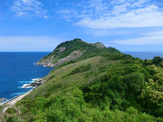 Image result for Ilha da Queimada Grande