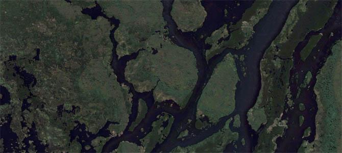 Novo Código Florestal expõe áreas úmidas como o Pantanal