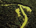 O melhor do ano em ((o))eco: Amazônia