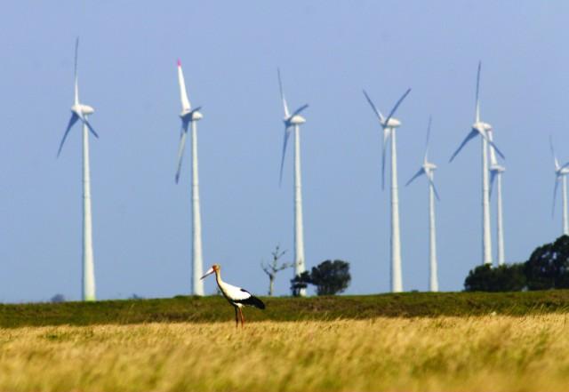 Para IPCC, renováveis são saída para aquecimento global
