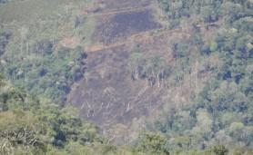 abre-desmatamento-rio-itajai-itaiopolis08-10-2010