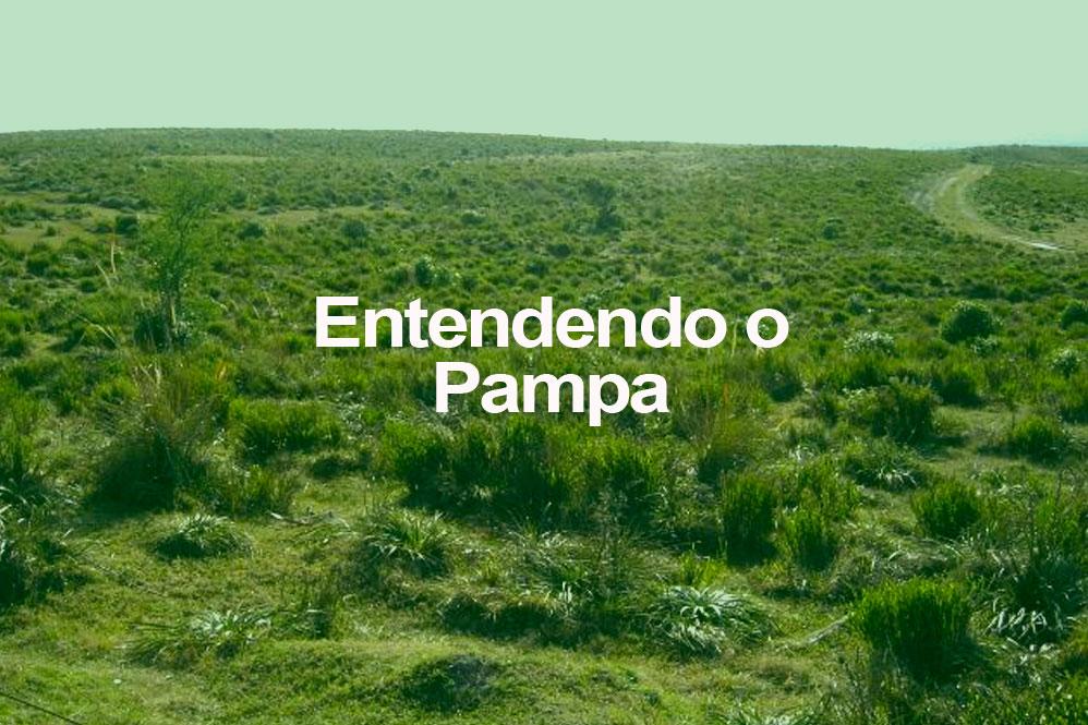 Entendendo o Pampa