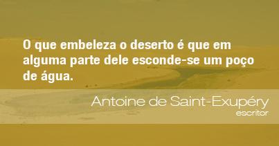 Frases Do Meio Ambiente Antoine De Saint Exupéry Escritor