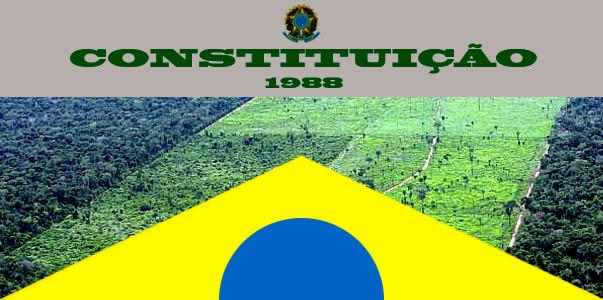 Novo Código Florestal não revoga a Constituição