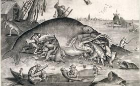peixecomepeixe