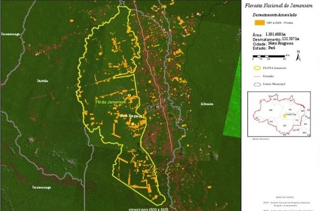 Regularização fundiária reduz desmatamento em UCs