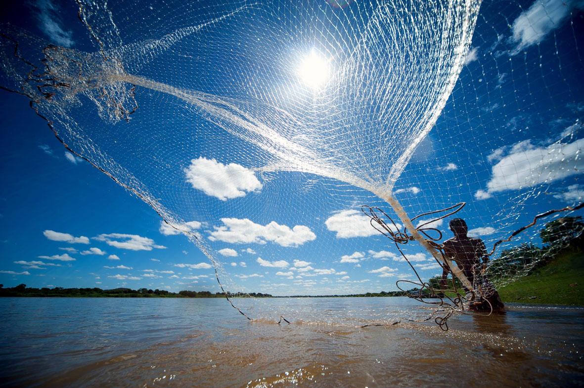 Rio São Francisco: os peixes se foram