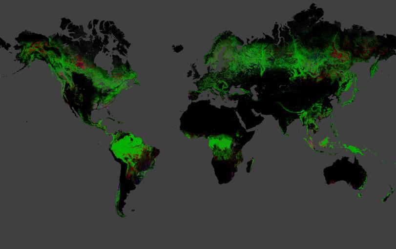 Esforço internacional mapeia desmatamento no mundo