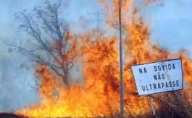 queimadabrasilia(1)