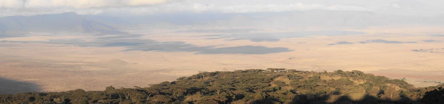 África, uma aventura na rota da grande migração