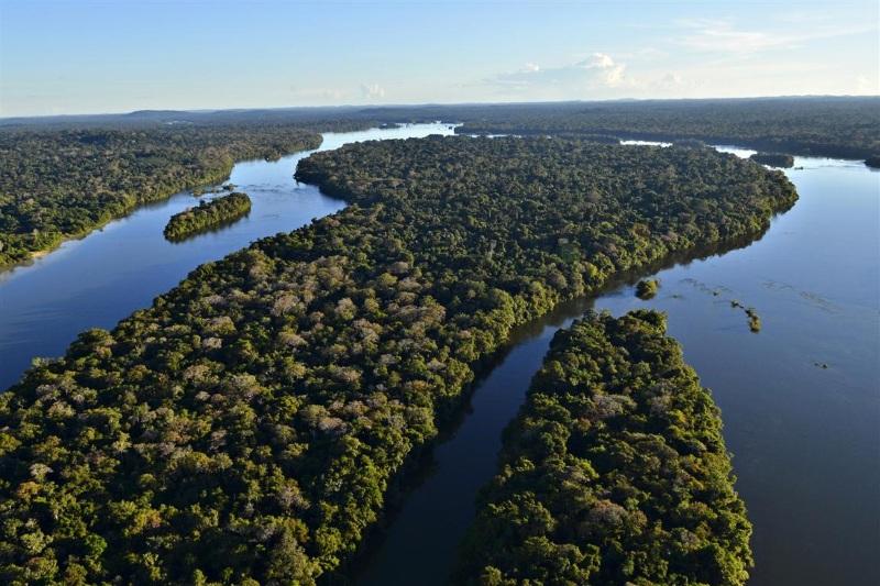 Governo desiste de construir hidrelétrica no Parque do Juruena