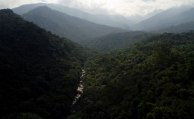 Itatiaia_national_park
