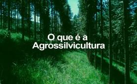 17042015-o-q-e-a-agrossilvicultura
