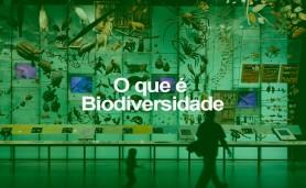o-q-e-biodiversidade