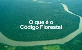 o-q-e-o-codigo-florestal
