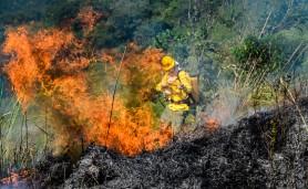 10042014-incendio
