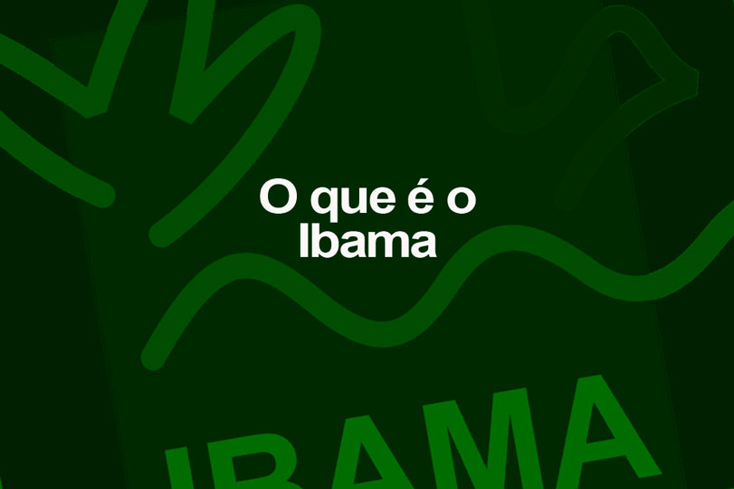 O que é o IBAMA