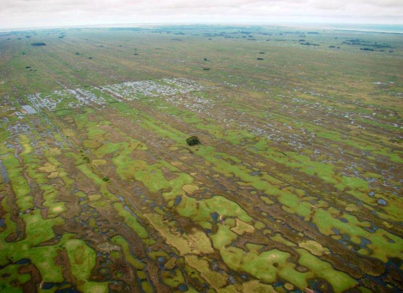 Rio Grande do Sul ganha nova Reserva Biológica