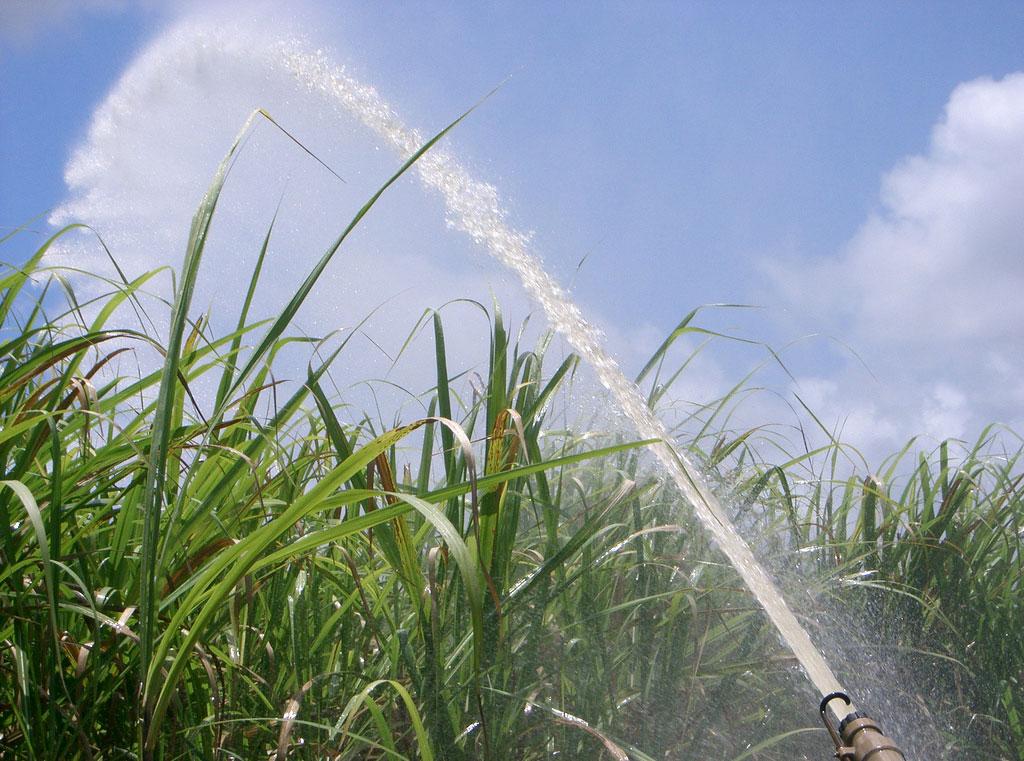 Agricultura financiada com fundos ambientais